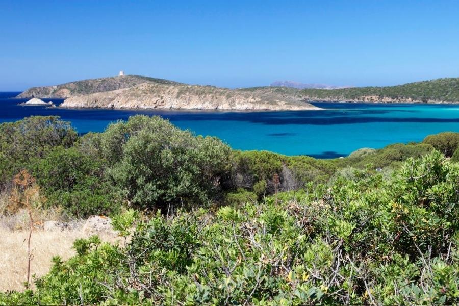 Spiaggia-di-Chia-in-Sardegna.jpg